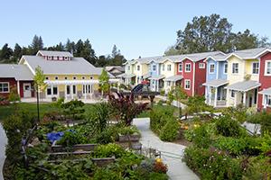 Cohousing: voordelen, risico's & tips