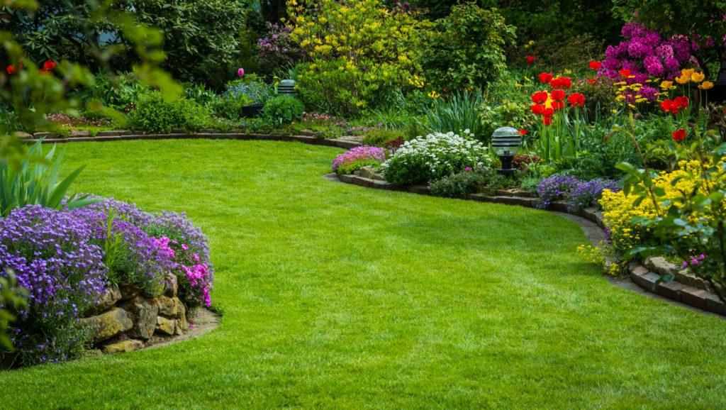 envie d une belle pelouse cet t il est temps de scarifier. Black Bedroom Furniture Sets. Home Design Ideas