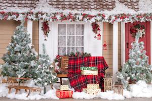 5 tips voor een geweldige wintertuin