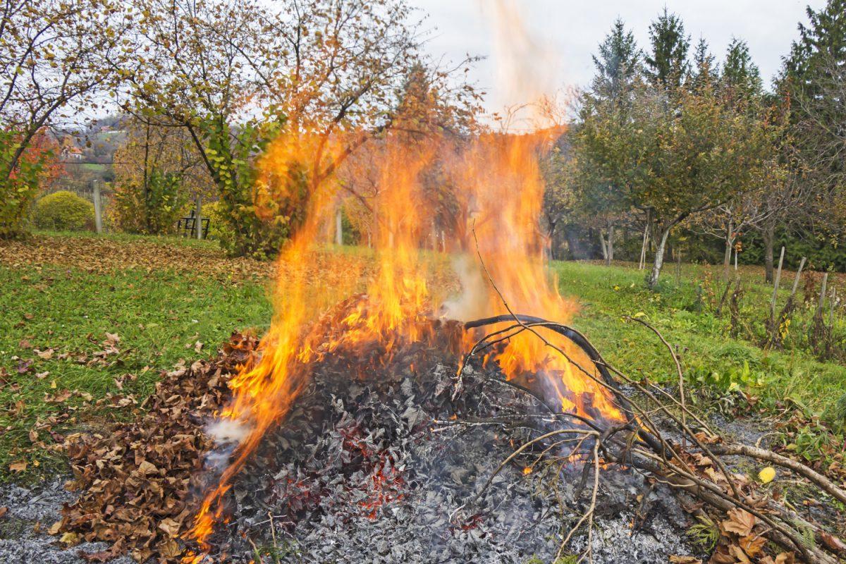 Mag je buur snoeiafval verbranden in zijn tuin?