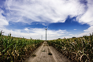 Onderzoek: hernieuwbare energie nu al goedkoper dan fossiele brandstoffen