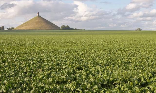 Immo in België: deze provincie breekt alle records