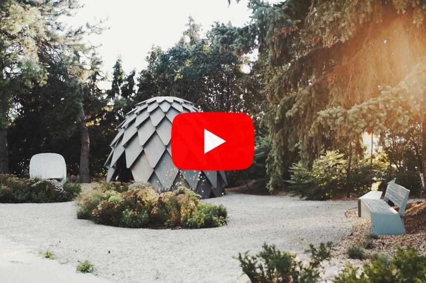 Video: Een vreemde denneappel om in te zitten