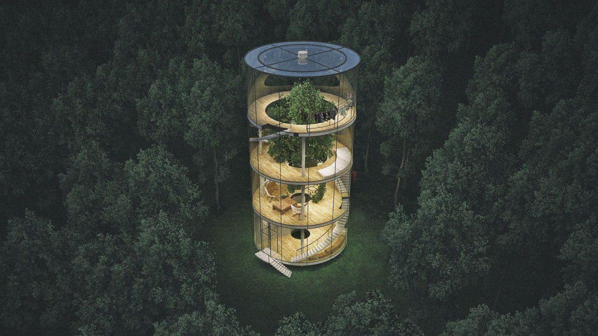 5 maisons avec un arbre à l'intérieur