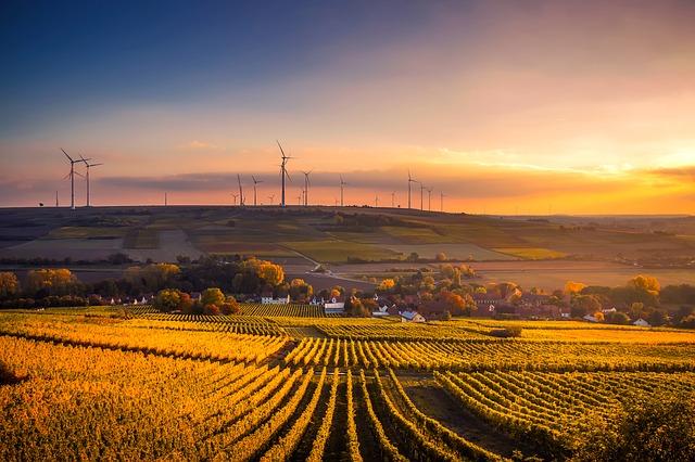 Duitse burgers bezitten bijna 1/3 van hernieuwbare energie
