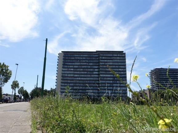 Een appartement van € 150.000 in Antwerpen, Brussel of Namen: wat krijg je?