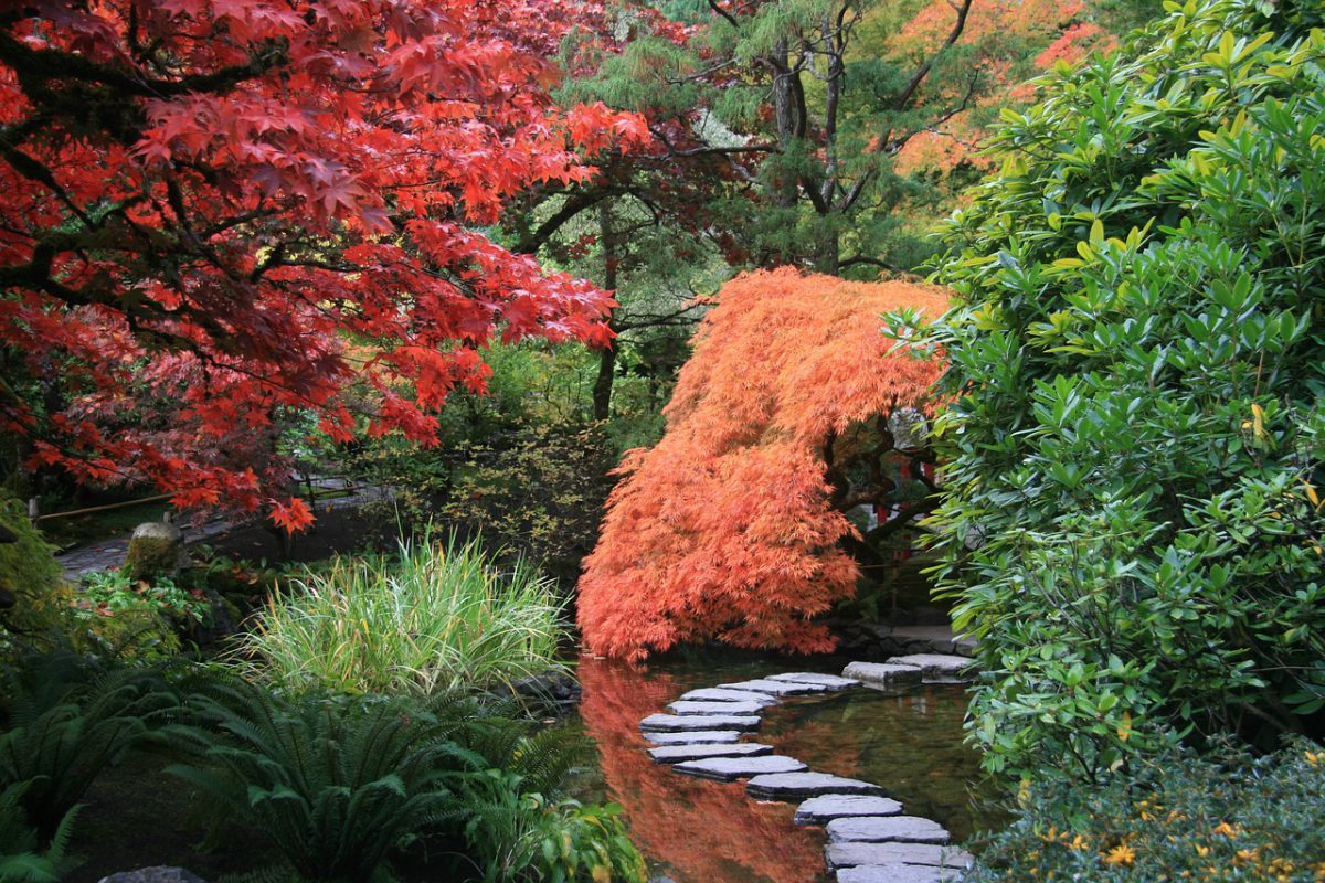 Zo creëer je je eigen Japanse tuin