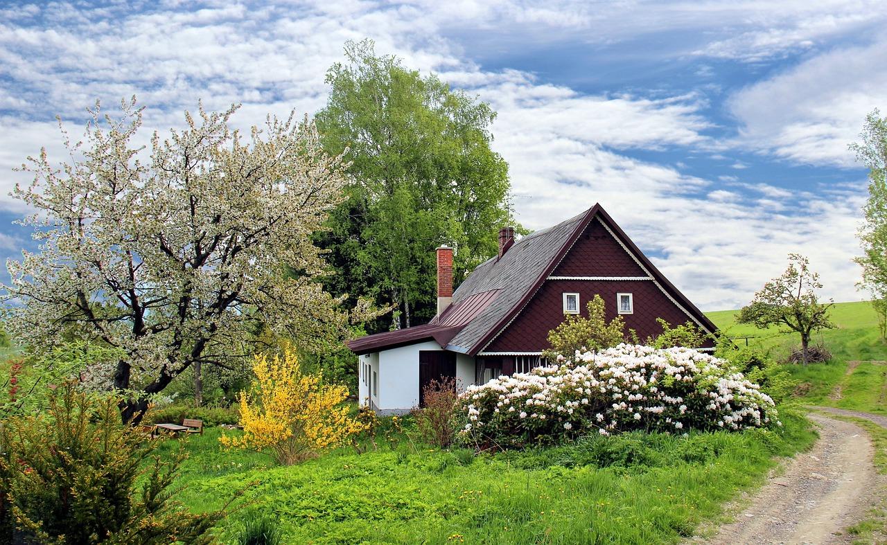 5 redenen om het platteland boven de stad te verkiezen