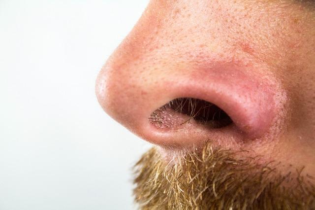 4 conseils pour lutter contre les odeurs dans la maison