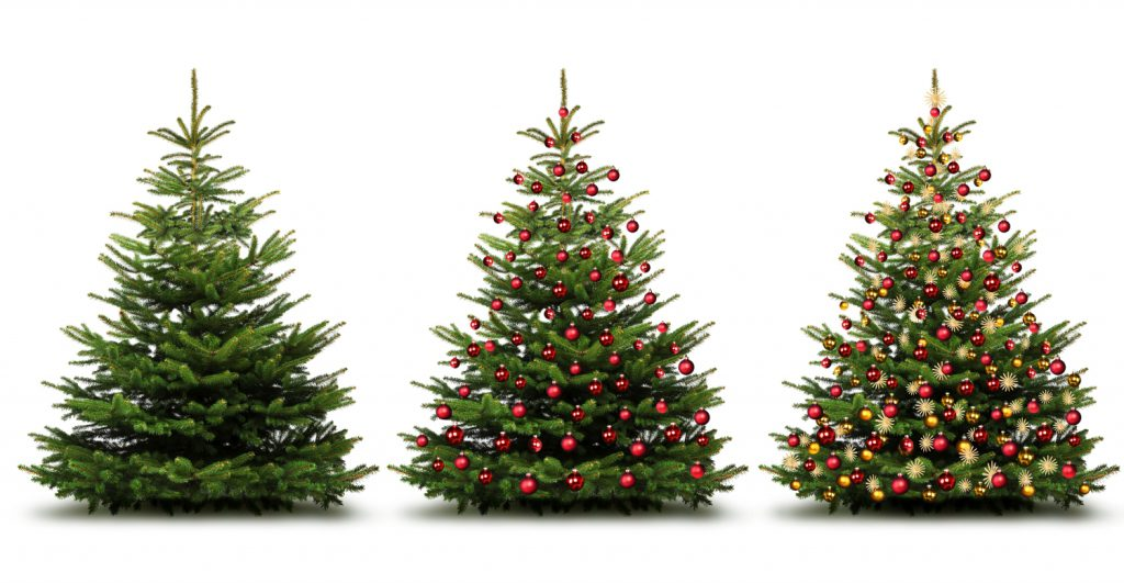 Quel sapin de Noël choisir : artificiel, naturel en pot ou naturel