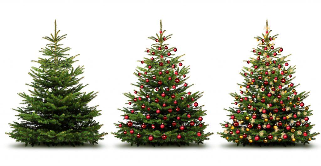 Welke Kerstboom Kiezen Een Valse Of Een Echte In Een Pot Of Niet