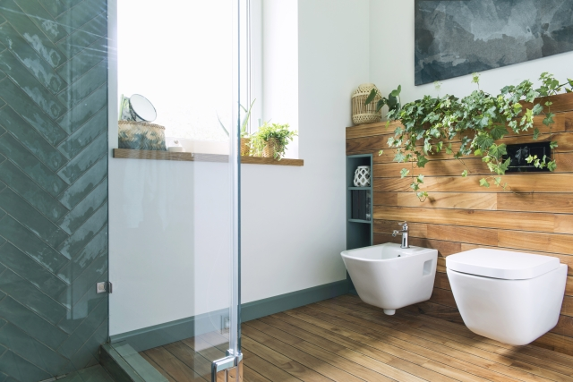 Planten Voor In De Badkamer.Top 5 Planten Voor In De Badkamer