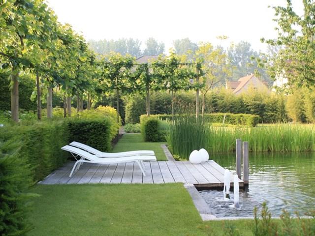 4 cruciale vragen voor de aanleg van je tuin
