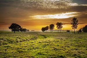 Val je onder de pachtwet als je je grond gratis laat gebruiken?