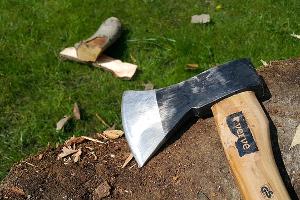 Mag een huurder bomen en planten verwijderen?