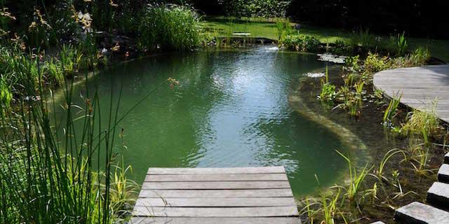 Immo nieuws je eigen zwemvijver aanleggen for Zwemvijver afmetingen