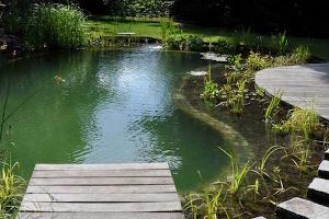 Je eigen zwemvijver aanleggen in 4 stappen