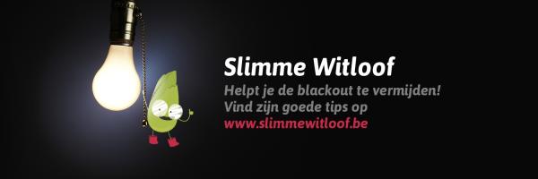 slimme witloof
