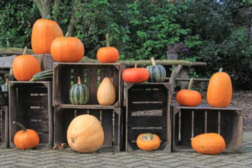 halloween idee decoration
