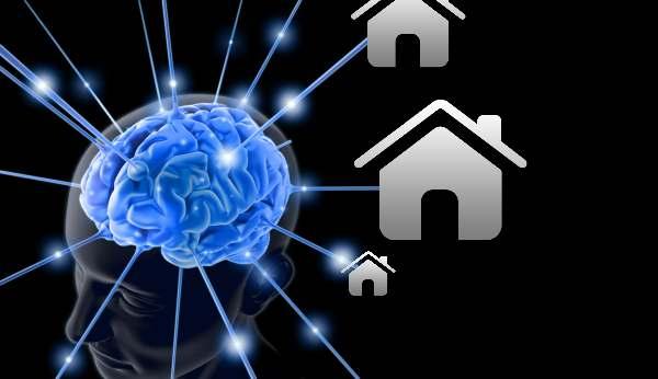 immovlan- Intelligente mensen zouden vaker verhuizen.