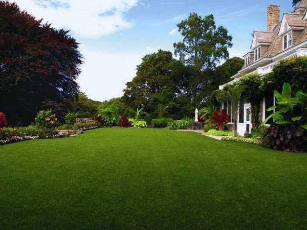 het duurste huis van de VSA, tuin -  Immovlan.be