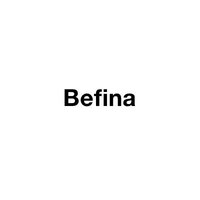 Logo Befina NV