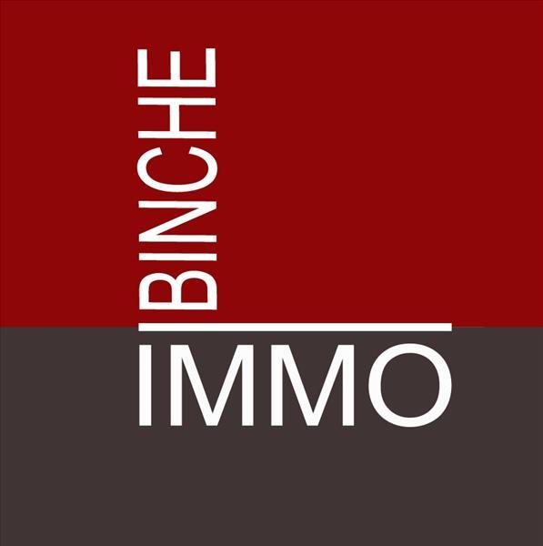 Logo BINCHE Immo