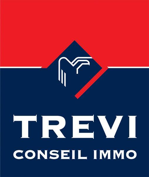Logo TREVI Conseil