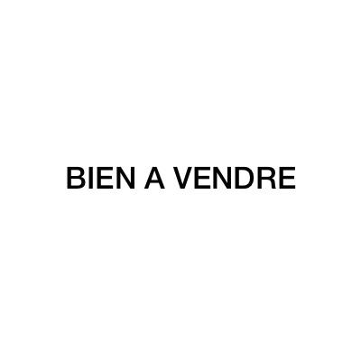 Logo BIEN A VENDRE