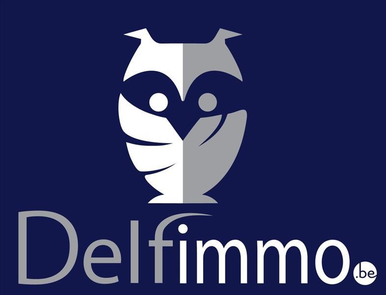 Logo DELFIMMO