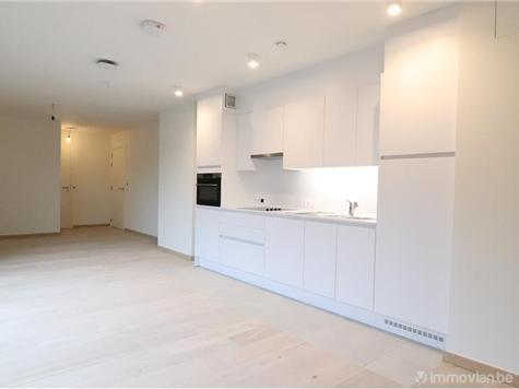 Flat - Apartment for rent in Varsenare (RWC14000)