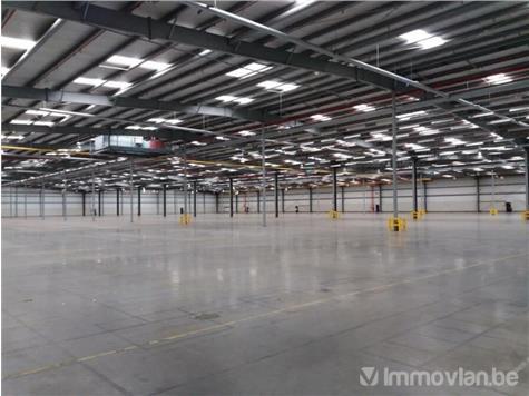 Industrial building for rent in Puurs (RWB74590) (RWB74590)