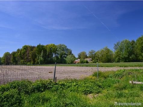 Maison à vendre à Stekene (RWB90779) (RWB90779)