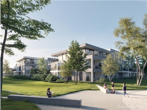 Appartement à vendre à Hoogstraten (RAP63763)