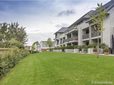 Penthouse te koop in Dikkelvenne (RWC11025)