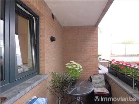 House for rent in Ternat (RAH80912) (RAH80912)
