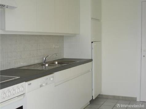 Flat - Apartment for rent in Sint-Lambrechts-Woluwe (RWB84572) (RWB84572)