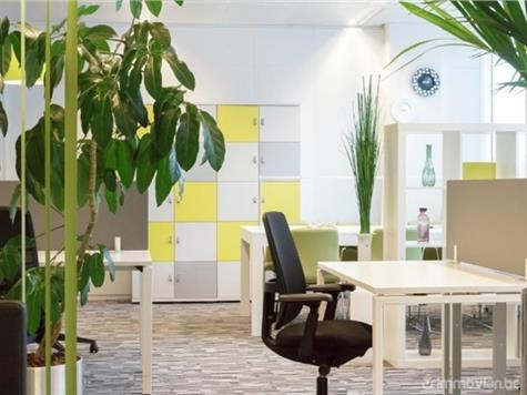 Bureaux à louer à Berchem (VAF22865) (VAF22865)