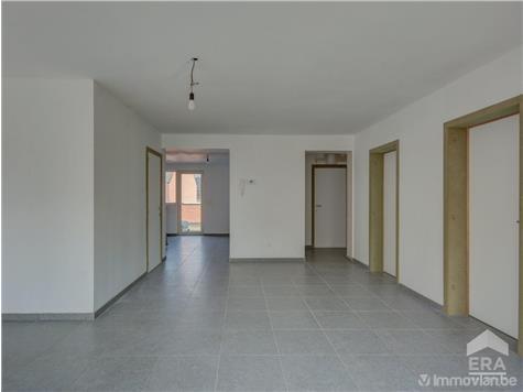 Commerce building for sale in Zonhoven (RAJ37344) (RAJ37344)