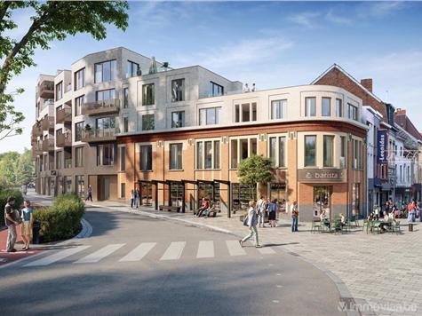 Handelspand te koop in Halle (RAJ85756)
