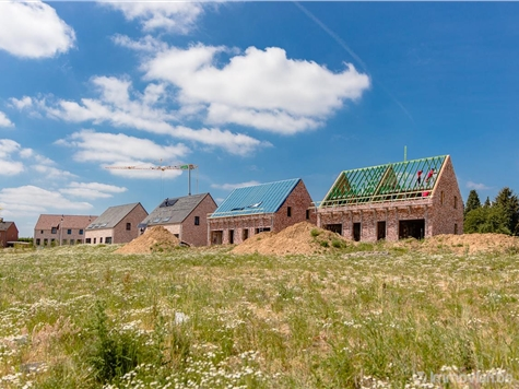 Development site for sale in Hoeselt (RAS82542)