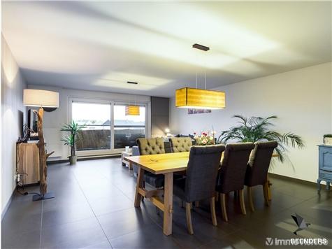Appartement à vendre à Meeuwen-Gruitrode (RAP90209)