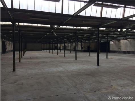 Industrie te huur in Oudenaarde (RAH09405)