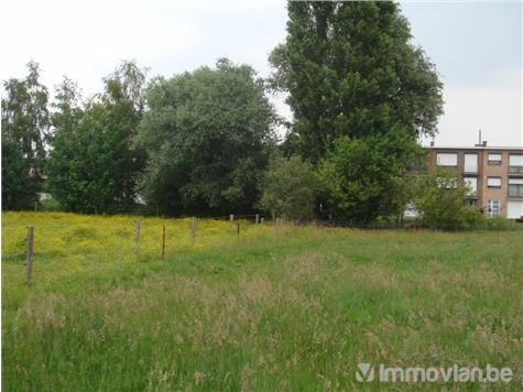 Maison à vendre à Aartselaar (RAF50029) (RAF50029)