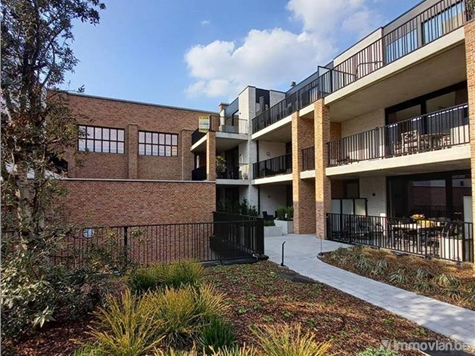 Flat - Apartment for rent in Alken (RAV28859)
