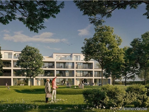 Flat - Apartment for sale in Hoeselt (RAJ06339)