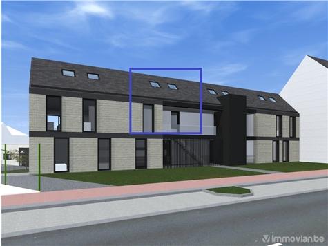 Duplex te koop in Orsmaal-Gussenhoven (RAP79619)