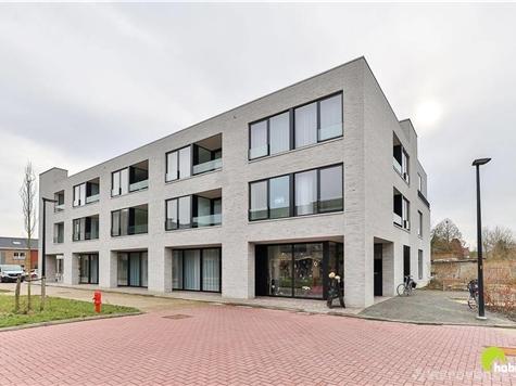 Appartement à vendre à Borsbeek (RAQ39744)