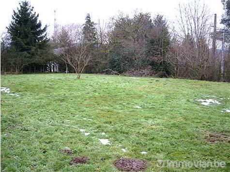 Terrain à bâtir à vendre à Rendeux (RAB20288) (RAB20288)