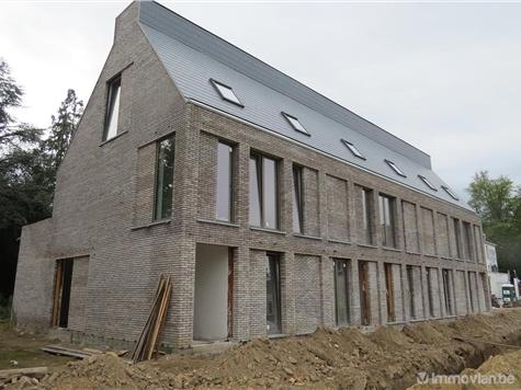 Duplex te koop in Olen (RAH71131)